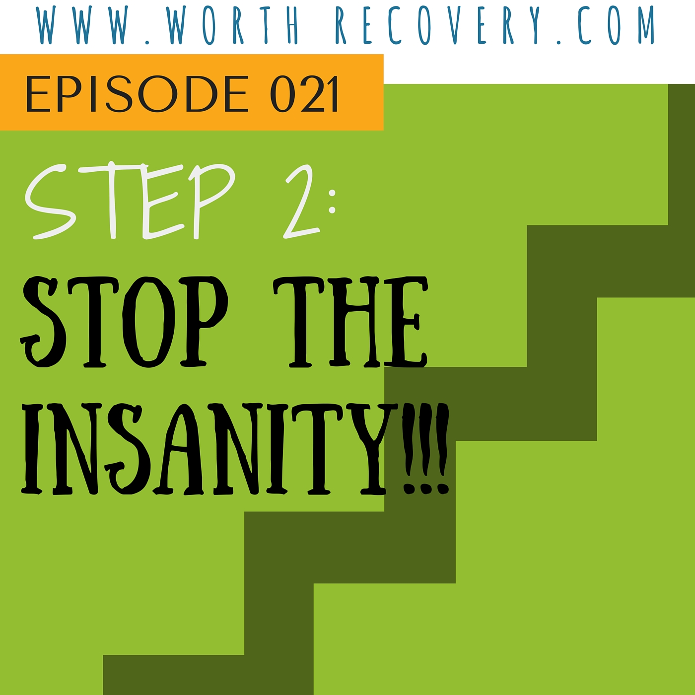 Ep 021: Step 2: Stop the Insanity!