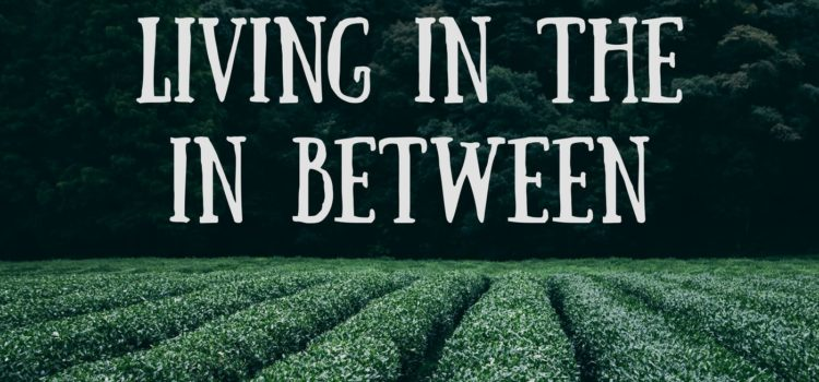 Episode 097:  Living In The In-between